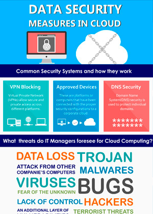Data Security Infographics